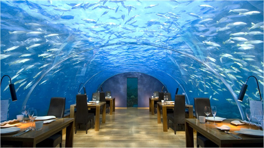 Conrad_Maldives_restaurant_ithaa