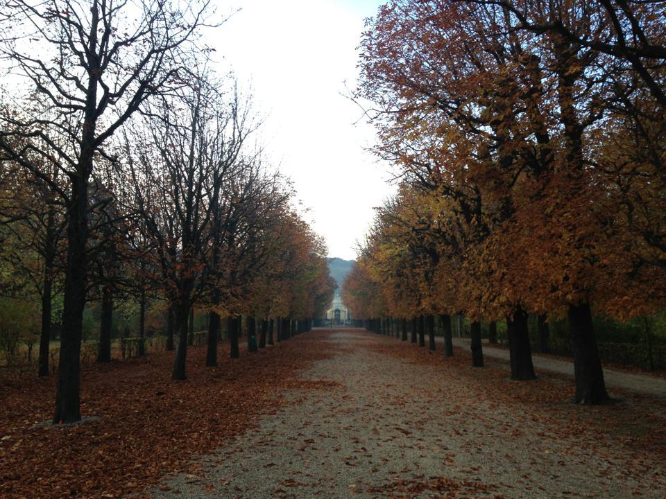 Wien Aussenbezirk