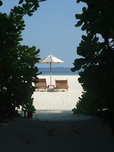Maledives 281