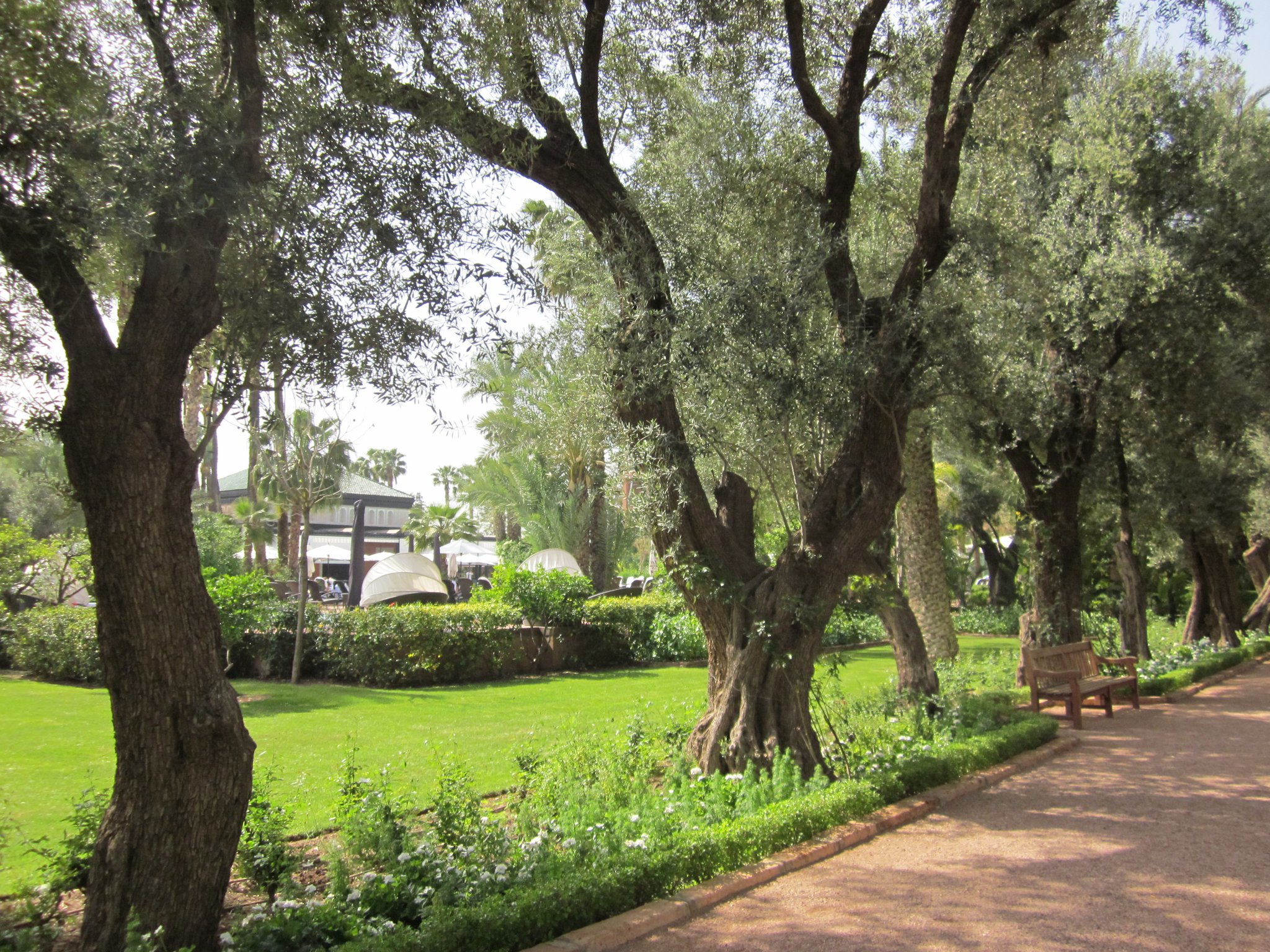 Marrakesh Garten