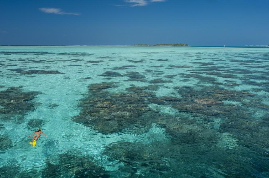 Conrad Maldives_Snorkelling (1)