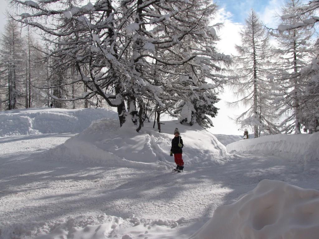 Mika im Schnee1