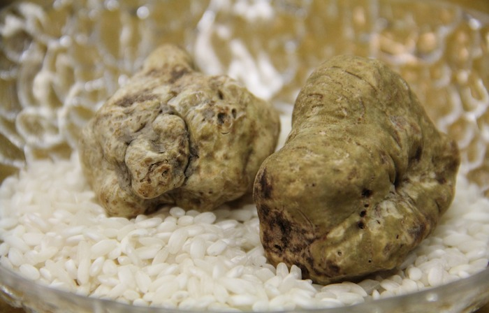 """White truffle menu by """"paco pérez 5 cinco"""" @hotel """"das stue ..."""