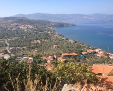 My summer on Lesvos /  Greece